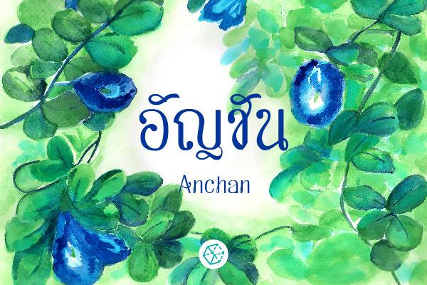 anchan-ss1