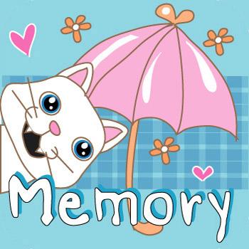 memory-cover