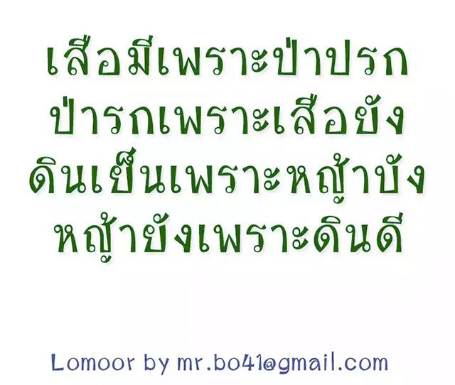 lomoor-preview-2